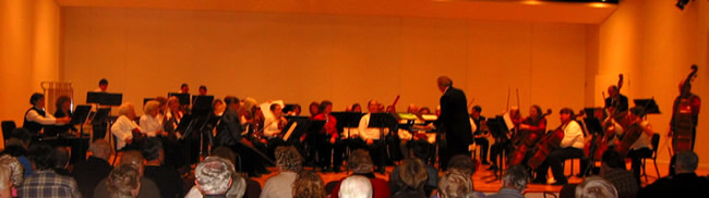 Picture of the orchestra